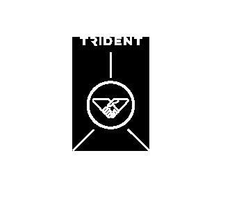 TRIDENT ADVISORY